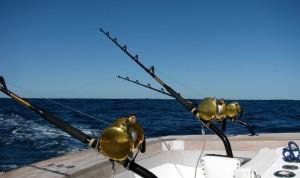 fishing-bg